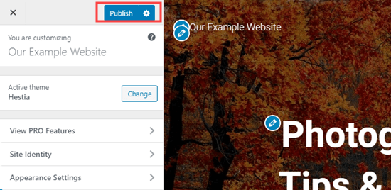 Click the Publish button in the customizer to make your homepage live