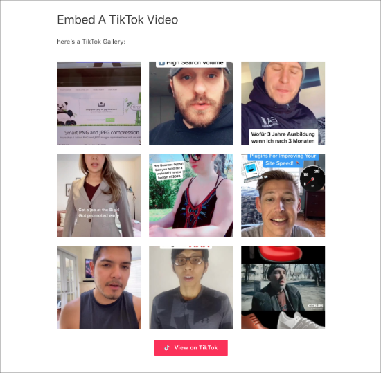 TikTok gallery in page
