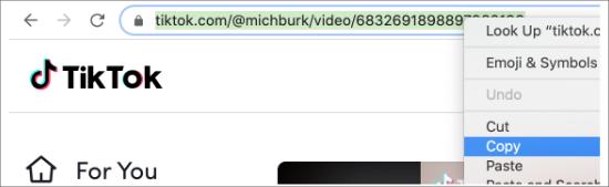 Copy TikTok URL