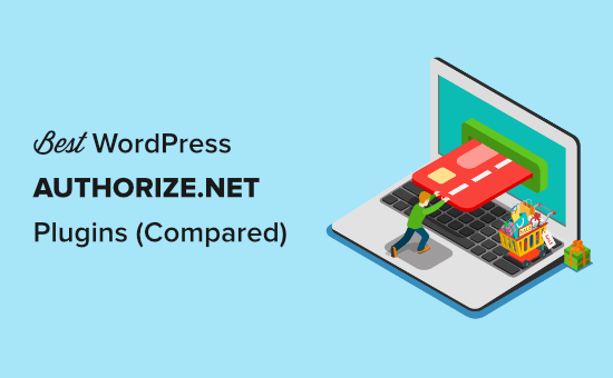 The Best Authorize.Net plugins for WordPress