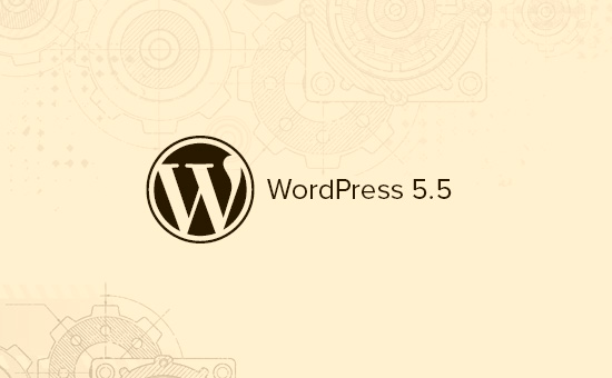 What's coming in WordPress 5.5 with features and screenshots