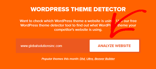 Type in the name of the website you want to analyze