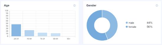Age and Gender of Website Visitors in WordPress
