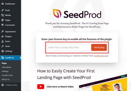 Entering your license key for SeedProd