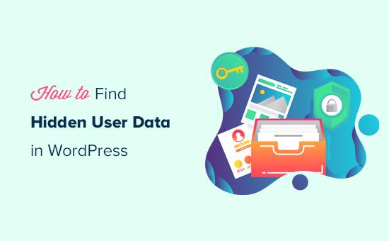 Finding hidden user data in WordPress