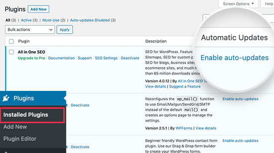 Enable automatic updates for WordPress plugins