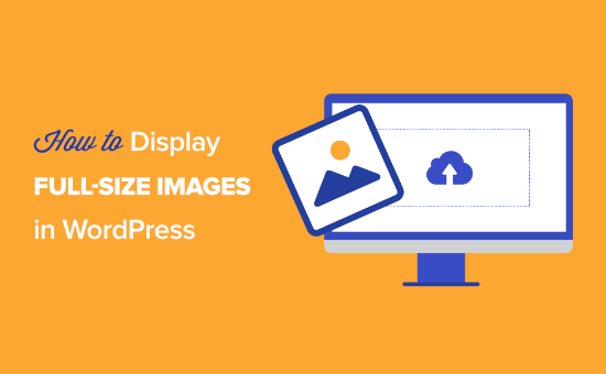 How to display full-size images in WordPress